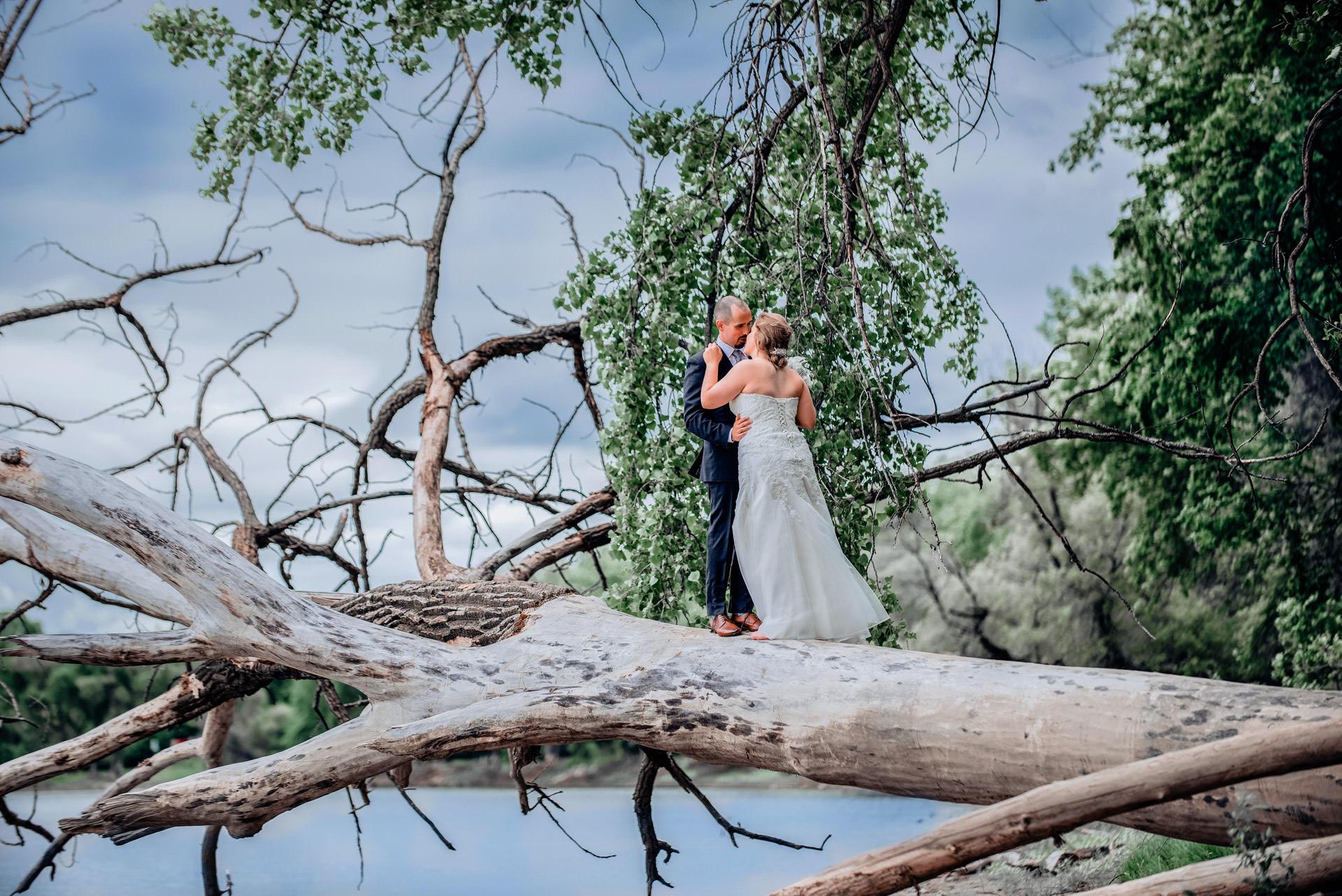 Stardust Photography - Winnipeg Wedding Photographer